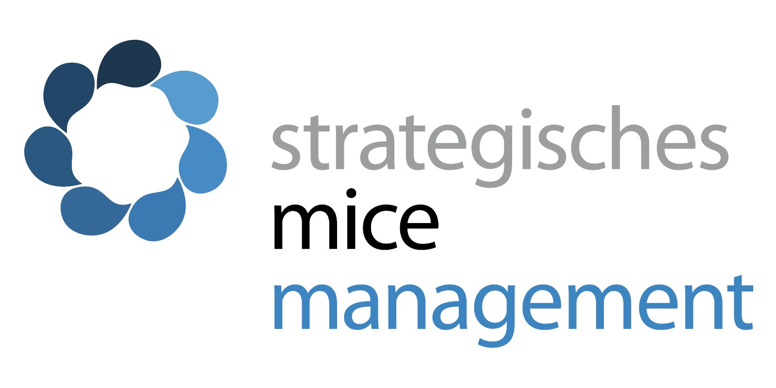 Strategisches Mice Management